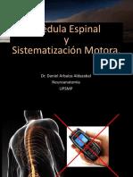 Clase 5. Médula Espinal y Sistematización Motora.
