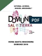 HS Misionera Domund2016