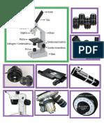 Partes y Funciones Del Microscopio
