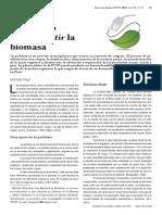 Pirólisis.pdf