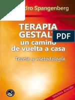 Spangenberg A_Terapia Gestalt un camino de vuelta a casa. Teoria y Metodologia.pdf