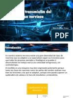 SINAPSIS Y TRANSMISIÓN DEL IMPULSO NERVIOSO - EXPO (1).pptx