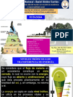 Ecologia Semana 04 Niveles Redes Cadenas y Piramides Trofica. Ciclos Biogeoquimicos