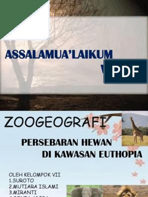 960+ Gambar Hewan Zoogeografi HD Terbaru