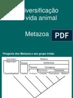 6-Diversidade_dos_Metazoa_2018.pdf