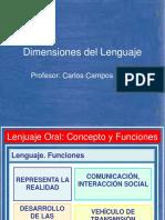 Dimenciones Del Lenguaje