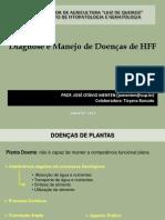 Aula 3 - Diagnose e Manejo de Doenças de HFF 2016