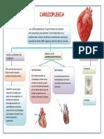cardioplegia