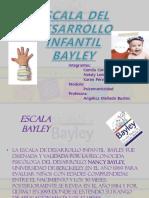 BAYLEY.pptx