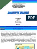 Presentación Ambiente Marino