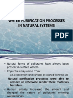 1) Water Purification in Natural Systems