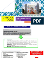 TEMAS PRACTICO DRA HILDA.pptx