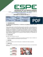 Informe 2 de Netbeans (Ing Project)