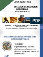 2 Organismos Internacionales