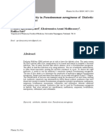 Pseudomonas Aeruginsosa