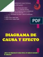 Diagrama de Causa y Efecto.123
