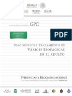 Manual Endoscopia
