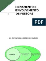 Treinamento e Desenvolvimento 2