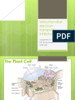 Mitochondrial Electron Transport Inhibitors