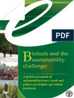 Biofuels and the sustainability challenge.pdf