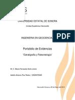 Portafolio Estratigrafia y Paleontologia