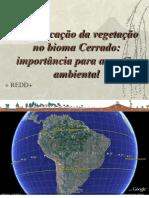Classificação Do Cerrado Para Gestao Ambiental