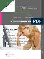Gestao de Stress Profissionalppt (1)