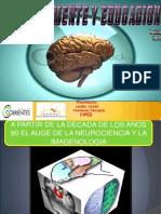 Cerebro Mente Educacion 101116221652 Phpapp02