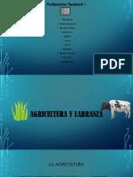 Trabajo Agricultura y Labranza