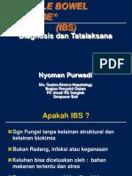 IBS Presentasi Copy