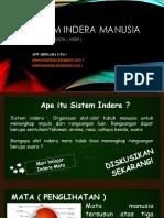 183758635-SISTEM-INDERA-ppt.ppt