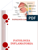 Patologias Laringeas Crónicas e Inflamatorias
