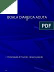 172419688-Boala-Diareica