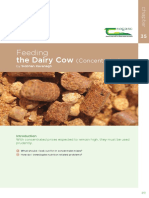 Feeding Diary Cow Concentrate.pdf