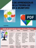 Estilos de Aprendizaje Honey Mumford