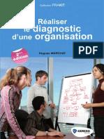 Realiser Le Diagnostic Dune Organisation