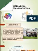 Modelos de Empresas Asociativas