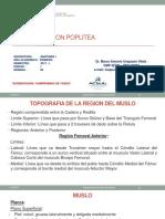 6.1ponencia Muslo Usmp