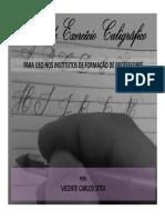 APRESENTAÇAO E INSTRUÇÕES FEC.pdf
