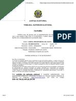 ELEITORAL.pdf
