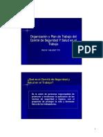 Presentación Organización Del Plan de Trabajo Comité SSO