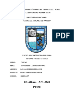 Informe de Fisica I_02_2010