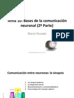 Presentación Tema 10 (2) Psicobio