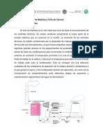 Ciclos de vapor (Ciclo de Rankine y Carnot)