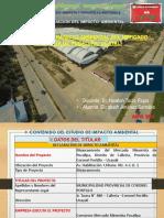 DECLARACIÓN IMPACTO AMBIENTAL MERCADO  MINORISTA DE PUCALLPA