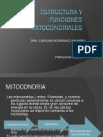 01 Estructura y Funciones Mitocondriales