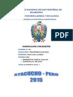 INFORME IV.pdf