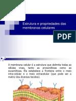 Aula 2- Membrana Plasmatica (1)