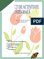 11_proiect_de_activitate.doc