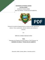 63092 Vazquez Alfaro, Maria de Lourdes Tesis